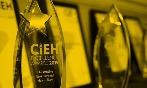 Close up of CIEH Awards trophy
